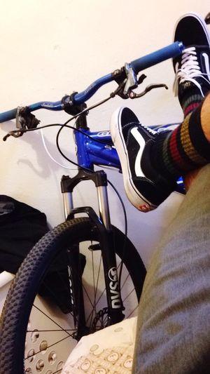 Fresh Mountainbike Giantbikes Niceday