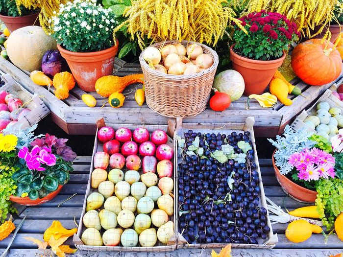 High angle view of fruits and flowers displayed at market stall