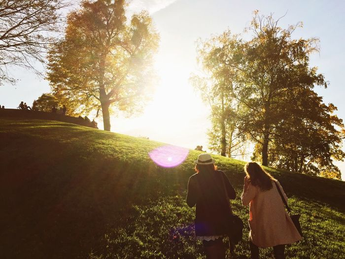 Global Eyeem Adventure - Stuttgart Nature Soaking Up The Sun Autumn Colors