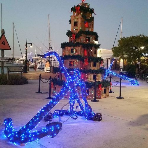 Key West Christmas Tree Celebration Christmas Christmas Lights Christmas Tree Christmas Decoration Illuminated Outdoors No People Tree Sky Day Key West Most Wonderful Time Of The Year  Anchors Christmastime Love My Life  Holiday - Event Christmas Lights Tradition Celebration Hot Christmas Ugh Lobster Traps Only In Florida