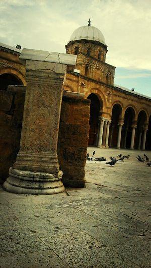Urban Nature Mosquée Zitouna