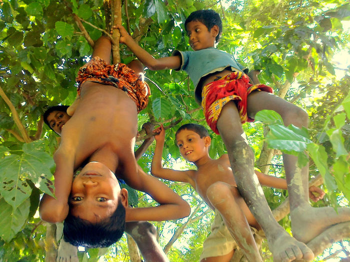 Childhood Madness Bonding Boys Casual Clothing Childhood Enjoyment Front View Full Length Fun Happiness Innocence Leisure Activity Lifestyles Person Playful Smiling Togetherness Tree EyeEmNewHere