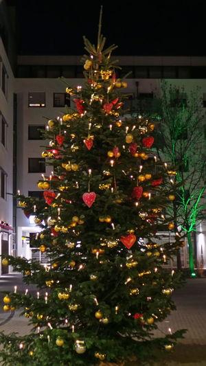 Chrismas Tree Frohe Weihnachten Nachtaufnahme Nachtfotografie Nightshot Weihnachten Weihnachtsbaum X-mas Xmas
