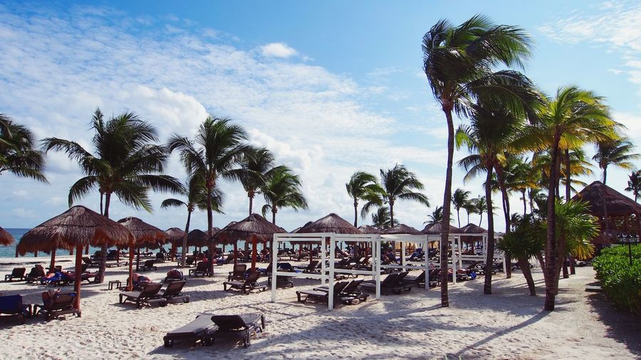 Traumhafte Aussichten an der Küste zwischen Cancún und Tulum, Mexiko Skybeds Playa Del Carmen Cancun Tulum Mexico Maya Resort Palms Beach Tree Plant Sky Nature Cloud - Sky Architecture Day Beach Sunlight Sand Tropical Climate