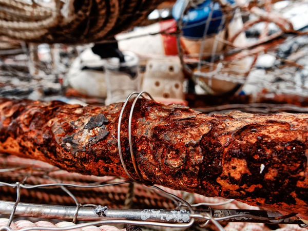 Crab pots in Westport, WA Barnacles Crab Crab Pots Crabpot Rope Barbecue Barnacle Barnicles Beef Close-up Commercial Fishing Net Crab Pot Crabbing Crabpots Day Detail Fishing Floats Focus On Foreground Food Food And Drink Freshness Indoors  Meat No People Ready-to-eat Steak