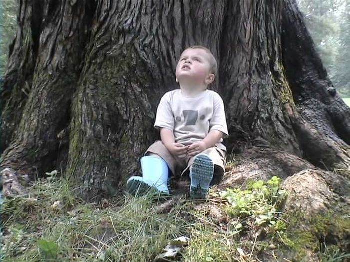 Boy sitting on tree trunk