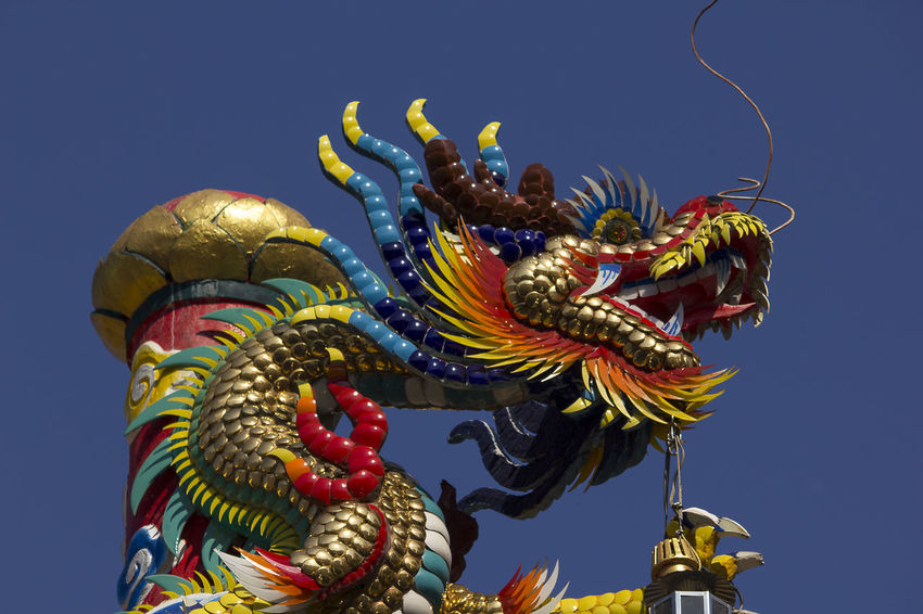 Golden dragon statue in Chinese temple Chinese Temple Ancient Architecture Golden Dragon Statue Architecture Art And Craft Belief Chinese Dragon Chinese Temple Chinese Temple Decoration Clear Sky Craft Creativity Dragon Dragon Statue Dragon Statues Festival Golden Dragon Golden Dragon Fly Golden Dragonfly Ornate Religion Sculpture Sky Statue
