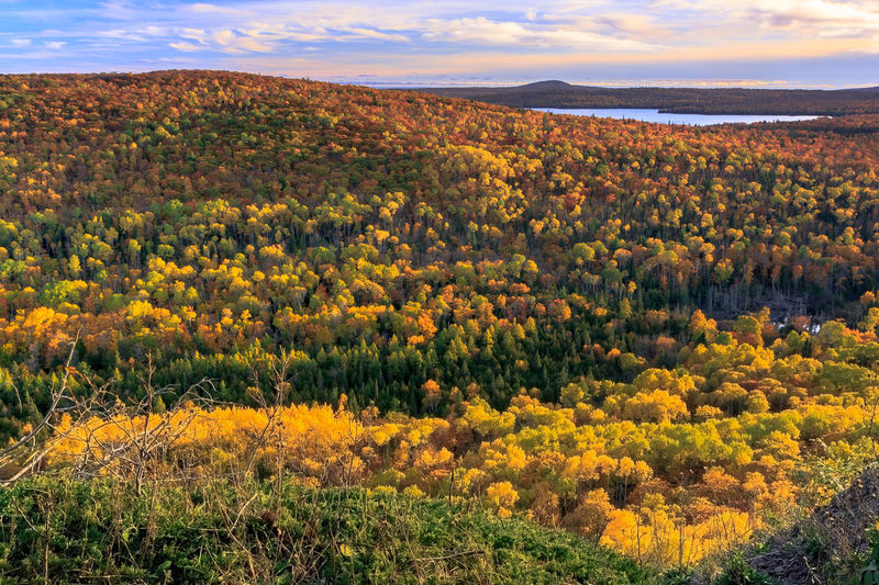 Autumn Autumn Colors Copper Harbor Keweenaw Peninsula Pure Michigan Senic Drive Senic View Sunset Upper Peninsula