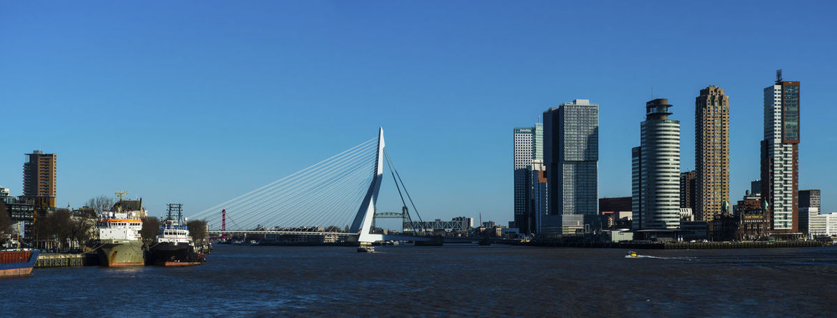 Rotterdam city Cityscape Erasmusbrug Rotterdam Architecture Blue Building Exterior Built Structure City Clear Sky Day Outdoors
