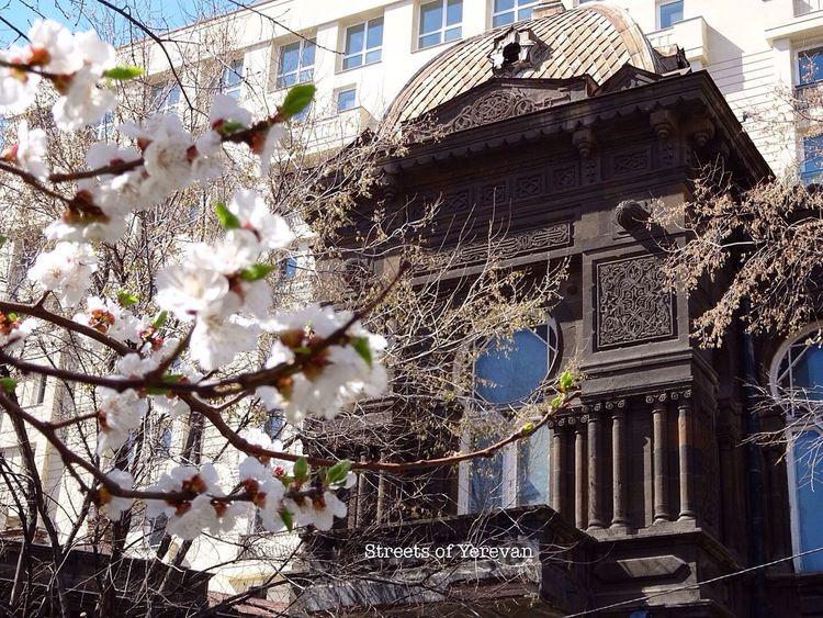 Hidden Gems  Yerevan Armenia