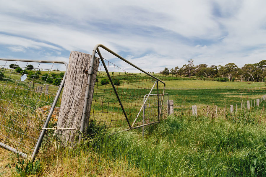 Agriculture Australia Beauty In Nature Cloud - Sky Day Farm Farm Fence Farming Fence Field Grass Green Color Landscape Nature No People Outdoors Rural Scenics Sky Tranquility