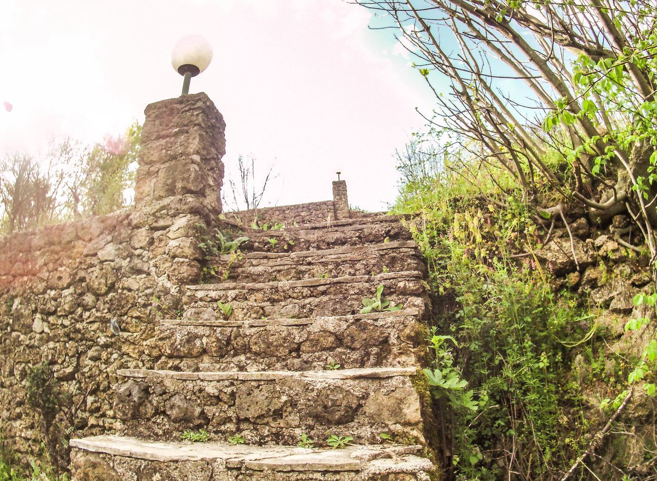 architecture, ancient, history, steps, built structure, steps and staircases, old ruin, staircase, tree, ancient civilization, no people, low angle view, day, building exterior, plant, outdoors, sky, nature