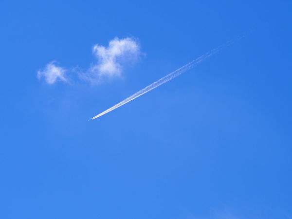 Airplane Clear Sky Flying Journey Single Cloud Sky Tranquility Vapour Trail