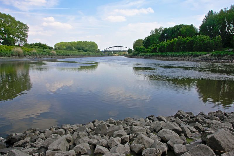 View on the Scheldt river with a bridge in the distance Flanders Schelde Transportation WTF Arch Arch Bridge Architecture Beauty In Nature Bridge - Man Made Structure Built Structure Day Landscape Nature No People Outdoors Reflection River Rock - Object Scenics Scheldt Sky Tree Water