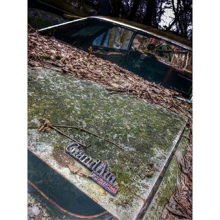 Grandampontiac Pontiac Junkcars Junkyard junker antiquecar abandoned rsa_rust rustcollector rustlord rsa_preciousjunk