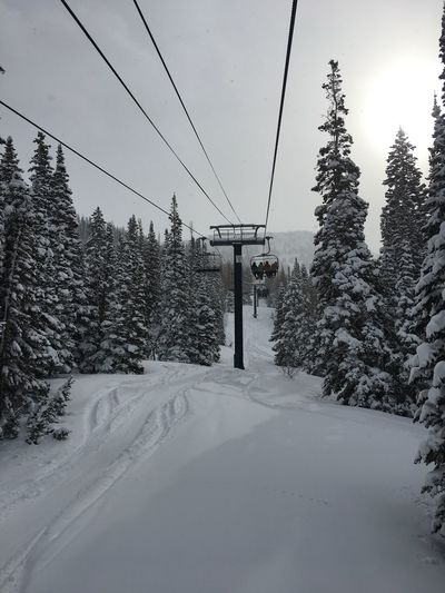 Great conditions Outdoors Snow Winter Tree Cold Temperature Nature Sky Day Ski Lift Chairlift Snowboarding Skiing Utah Cold Mountain Landscape Snowy Resort Mountains And Sky