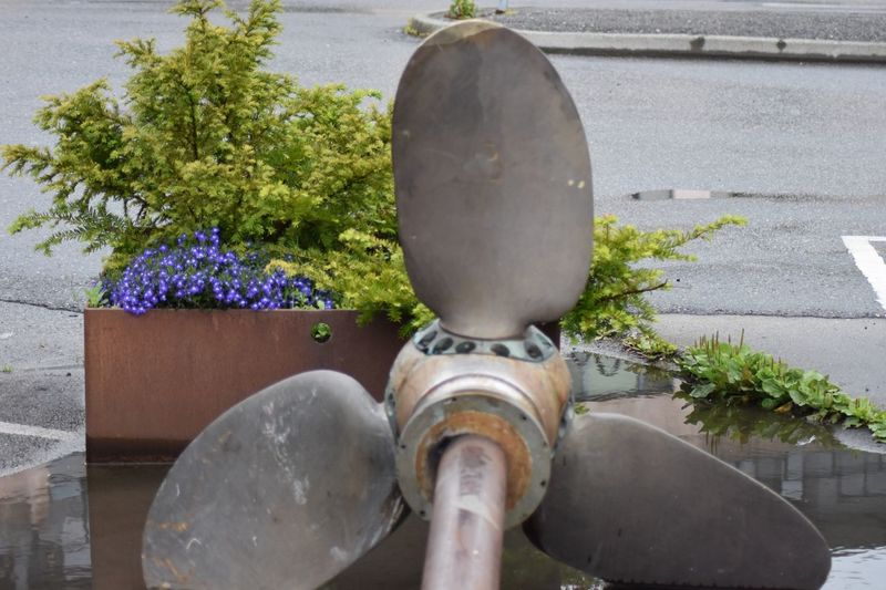 Boat Propeller Rusty Rust Metal Norway🇳🇴 Flowers Rainy Puddle Outdoor Plant Close-up