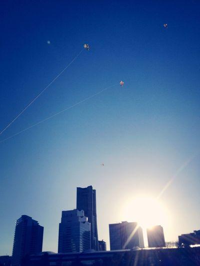 Sky Kites fly into the sky.