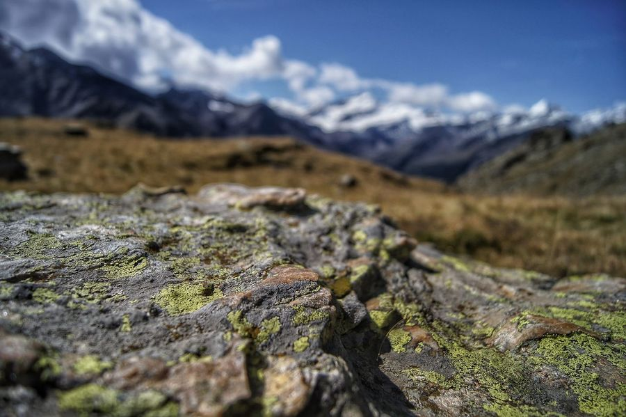 Alpine Rock Alps Beauty In Nature Close-up Cloud - Sky Day Focus On Foreground Grasses Landscape Mountain Nature No People Outdoors Rock - Object Scenics Sky Snow Stone Tranquility