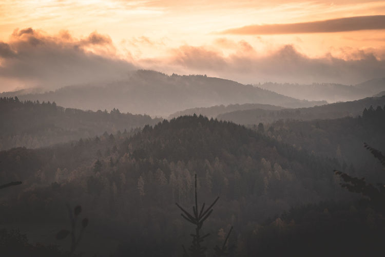 Beauty In Nature Sky Tranquility Tranquil Scene Scenics - Nature Fog Sunset Plant Tree Mountain Landscape Non-urban Scene No People Nature Idyllic Cloud - Sky Environment Growth Hazy  Outdoors