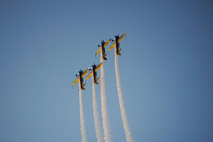 Hawks of