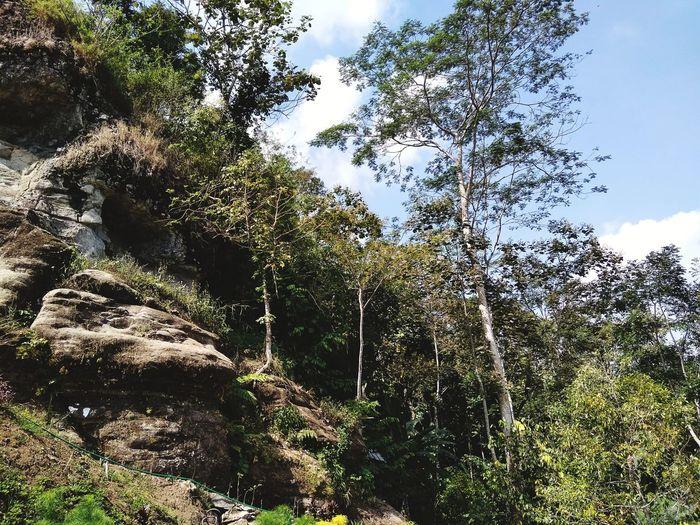 gunung Manggul