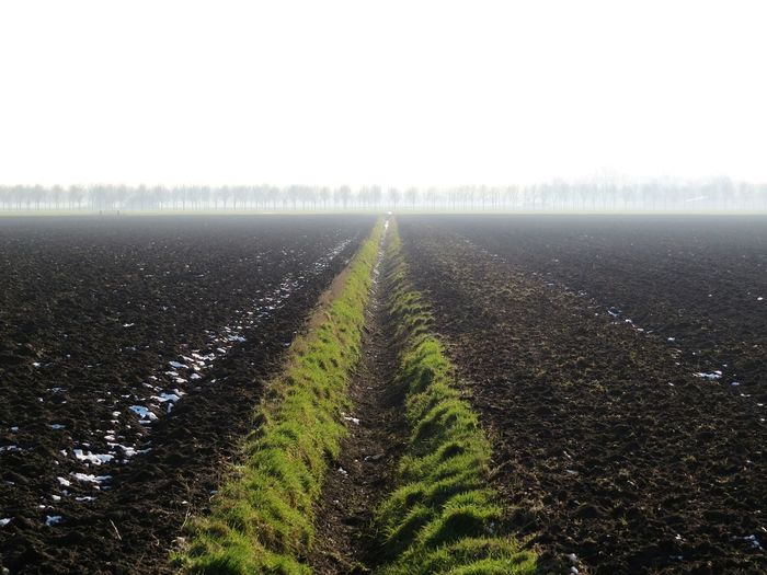 Agriculture Diminishing Perspective Tranquility Field Landscape The Way Forward Nature Beauty In Nature Rural Scene Scenics Plowed Field Depth Of Field Depth Of Beauty Sx50hs Thenetherlands Holland Wijk Bij Duurstede