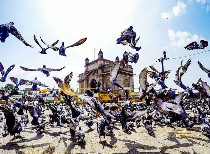 Mumbai Meri Jaan Mumbai India Gatewayofindia Gopro Goprooftheday First Eyeem Photo Street Streetphotography Indiapictures EyeEm Best Shots EyeEm The Great Outdoors - 2017 EyeEm Awards