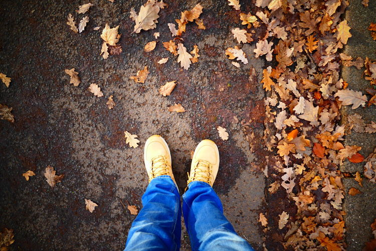 Street Photography Wood Autumn Human Body Part Human Leg Nature One Person Outdoors Real People Shoes Of The Day Fashion Stories An Eye For Travel
