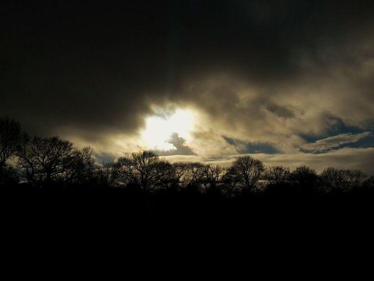 Sunlight Dark Beautiful Knaresborough Clouds And Sky Heavenly Nature Wintry Trees