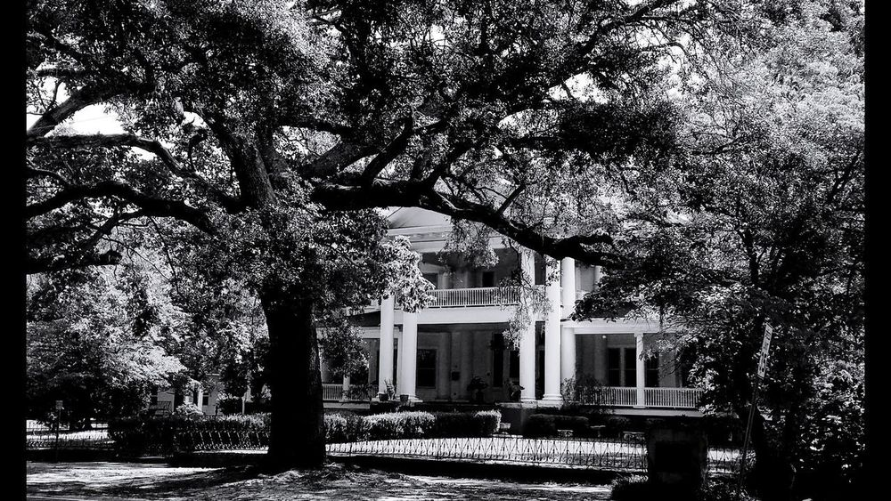 Down Home 2, Georgia roots in BnW Tree Architecture Southern Architecture Architecture Rural Scene