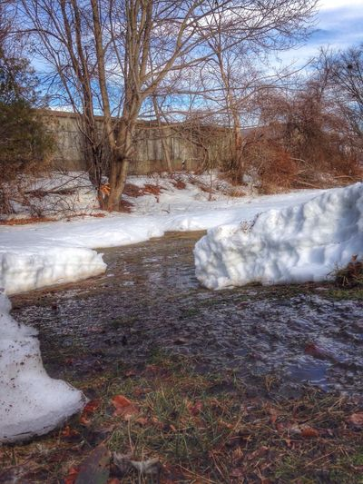 It was in the high 50's today.... My lawn went from under snow to under water.... Lol.... Hope my basement doesn't flood to bad Snow ❄ Melting How's The Weather Today? Eye4photography  Iphoneonly IPhoneography Landscape_photography Massachusetts Nature_collection