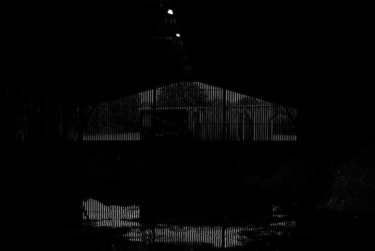 No People Architecture Water Outdoors Nature EyeEm Canon Atmospheric Mood Reflection EyeEm Gallery EyeEmNewHere Black & White Dark Lines