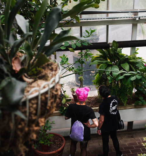 Rear view of women standing by potted plant