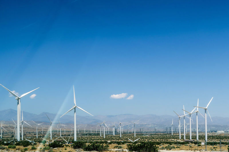 Wind turbine Tranquility Alternative Energy Blue Day Energy Environmental Conservation Field Fuel And Power Generation Generator Industrial Windmill Landscape Nature No People Outdoors Renewable Energy Rural Scene Sky Technology Traditional Windmill Turbine Wind Power Wind Turbine Windmill