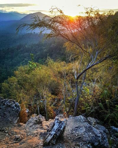 Sunrise Klboys Weekend TaburEast ThisIsMalaysia Sunlight Full Frame Backgrounds Sky Close-up