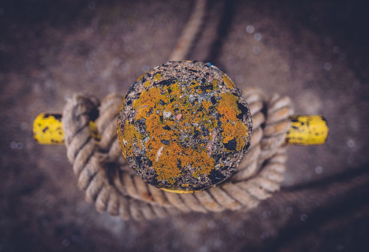 Directly above view of weathered bollard with rope