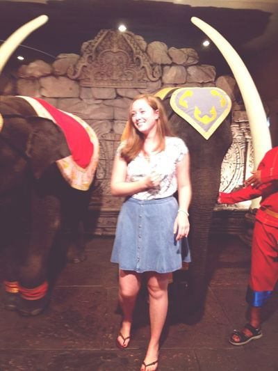 Hanging With Elephants