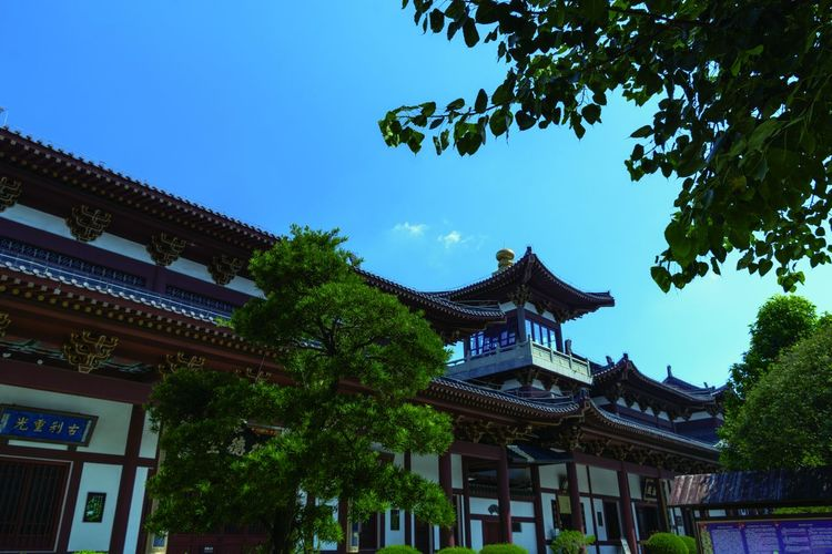 Architecture Building Exterior Built Structure Cultures Day Eaves Low Angle View No People Outdoors Place Of Worship Religion Roof Sky Spirituality Tradition Traditional Building Travel Destinations Tree 南宁青秀山