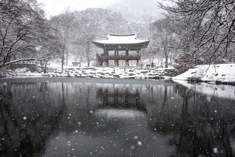 눈이 오는 절 Korea Landscape Morning Snow Tree Day Architecture Outdoors No People Water Sky Nature