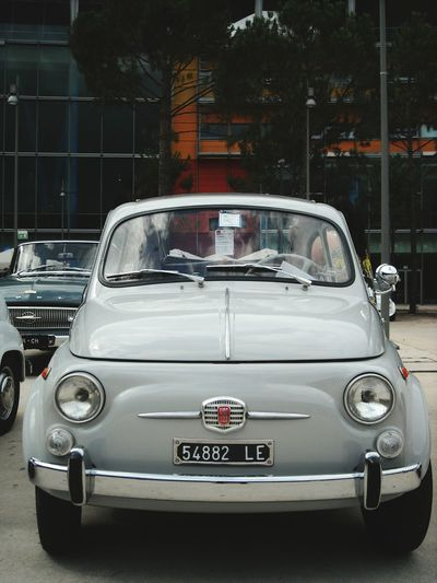 Fiat 500 Car Sport No People Relax Passion Passionforcars Fiat500 Fiat 500 Mostra Beautifulday