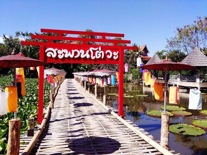 A Bamboo Bridge
