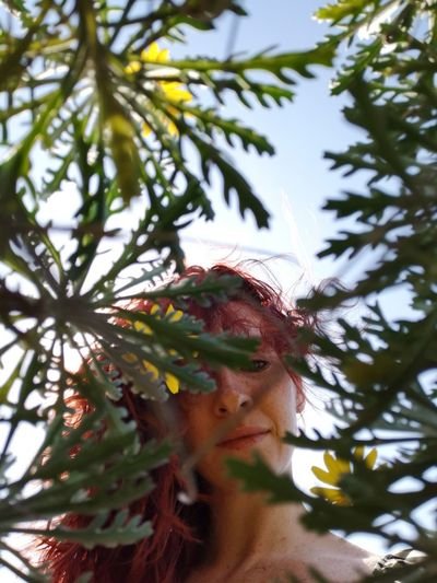 Low Angle Portrait Of Woman Seen Through Leaves