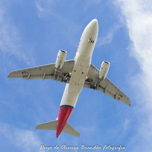 Plane Aviation Aircraft Avião Aviões Vitória - ES Parque Pedra Da Cebola