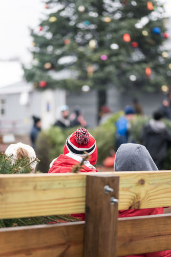 Close-up of christmas decorations on wooden fence