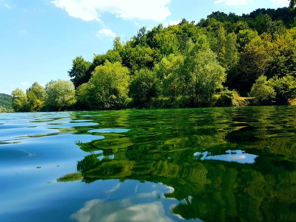 Colour Of Life Lake Lake View Lakeday Day Green Green Nature Trees Sky Colorsky