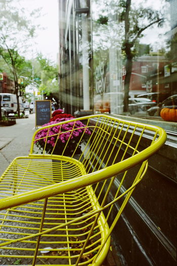 A yellow bench in West Village Bench Manhattan NYC NYC Photography NYC Street Photography New York New York City West Village Architecture Basket Benches Building Exterior City Close-up Colorful Day Greenwich Village No People Outdoors Yellow Yellw