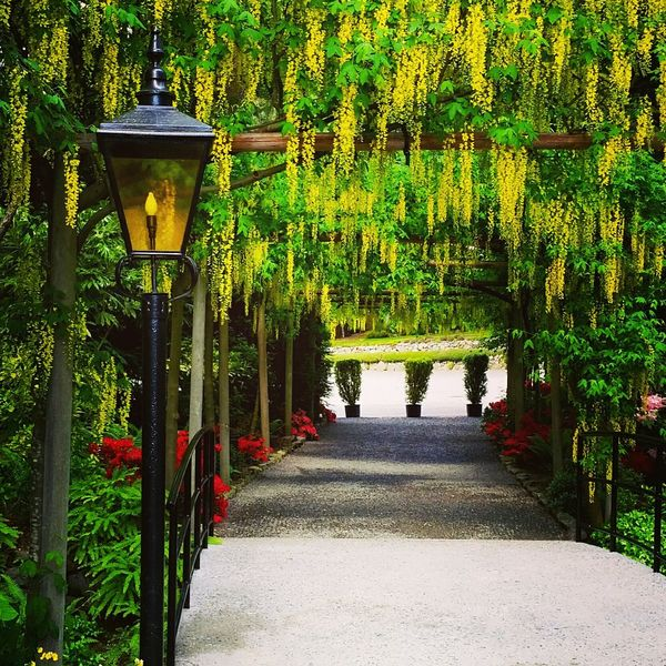 Garden Walls Buchart Garden Vancouver Island Canada Beautiful British Columbia