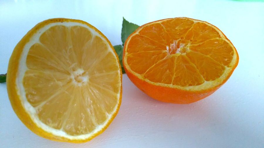 Lemon and orange Citrus  Citrus Fruit Cross Section Round Pattern Organic Biology Fruit Lemon Yellow Orange Orange Color Round White Background Nature Food Healthy Eating Healthy Lifestyle Cut Open Winter Freshness Colors Vitamin Spring Table