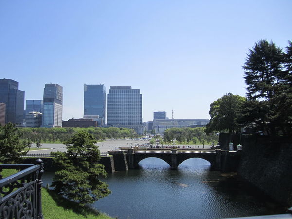 Architecture Bridge - Man Made Structure Building Exterior Buildings City Cityscape Clear Sky Day No People Outdoors Skyscraper Skyscrapers Tokyo, Japan Tree Trees Urban Skyline Water